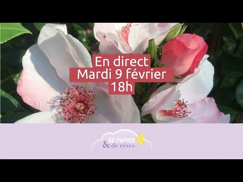 En direct le 9/02 : Peindre des roses à l'aquarelle