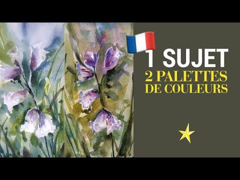 Un sujet, deux palettes de couleurs - VERSION FRANÇAISE