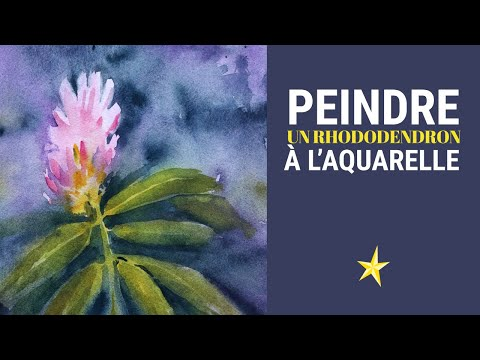 Peindre des boutons de rhododendrons à l'aquarelle