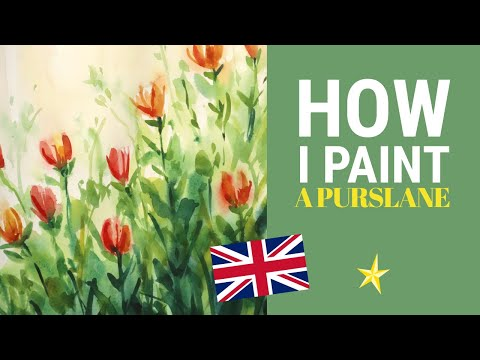 Painting a purslane in watercolor - ENGLISH VERSION
