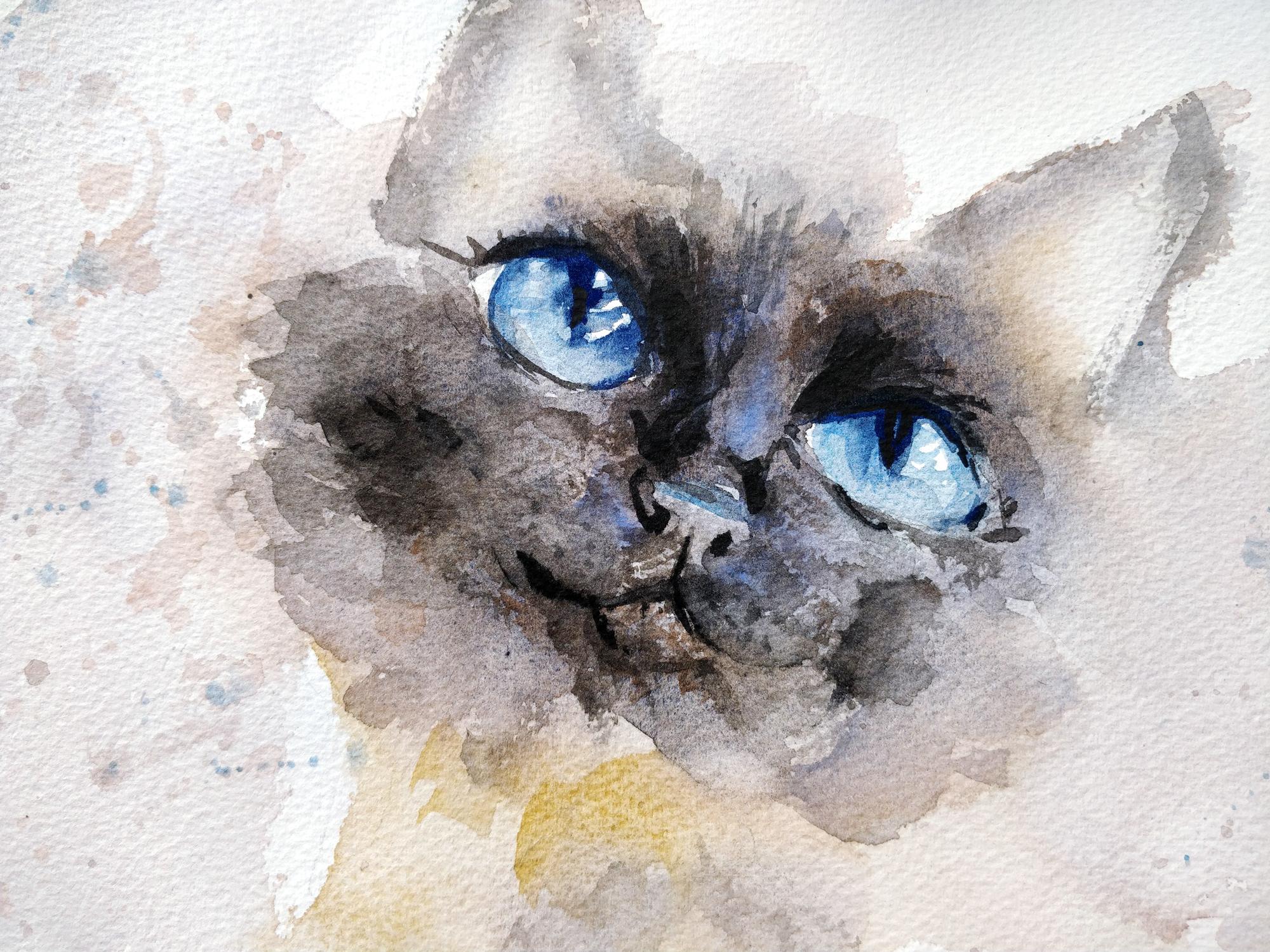 Les yeux d'un chat à l'aquarelle