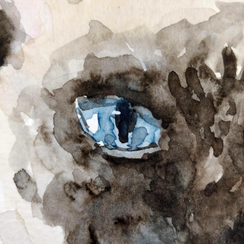 croquis d'un oeil de chat