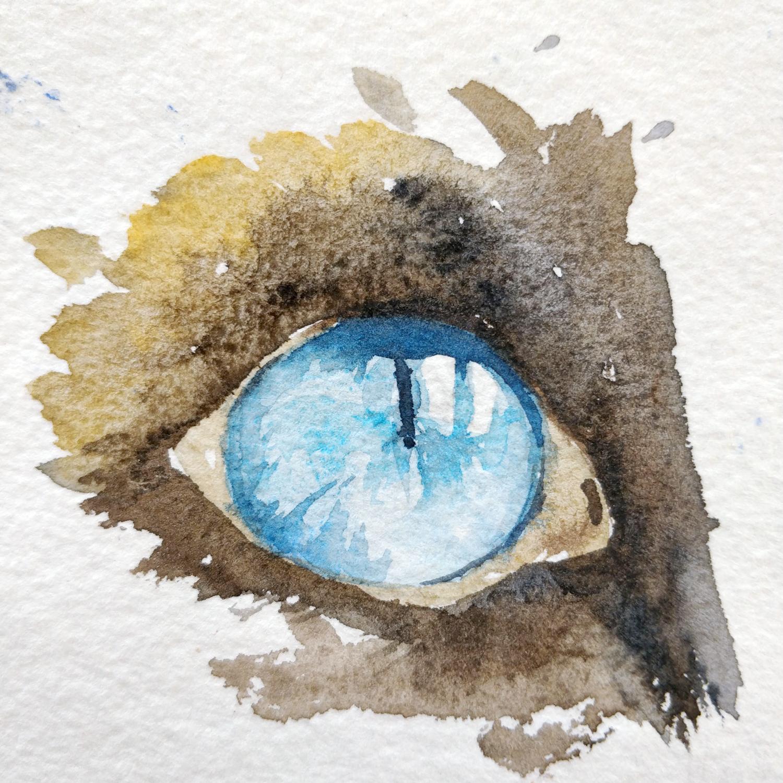 un oeil de chat fin et élaboré